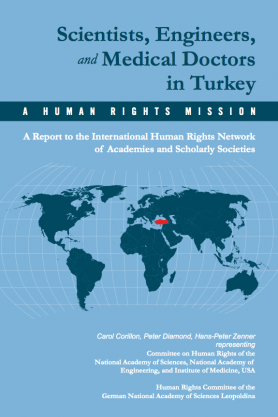 Scientists, Engineers, and Medical Doctors in Turkey
