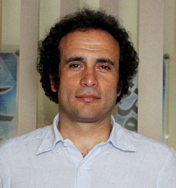 English: A cropped image showing Amr Hamzawy p...