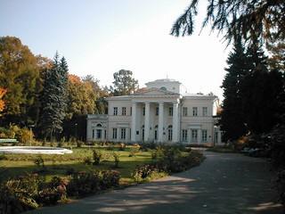 Cheremushki manor (ITEP), Palace