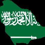 Photo: Mohammad Aziz (http://creativecommons.org/licenses/by-sa/2.5)], via Wikimedia Commons