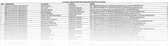 Turkey Decree, Turkish academics arrested